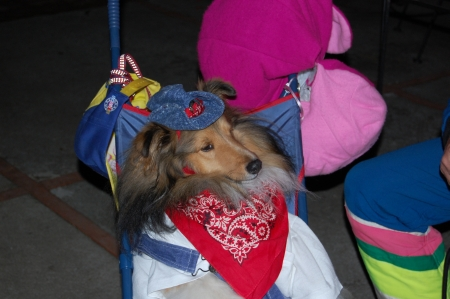 I wanted to dress as Lassie